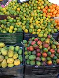 Loja Kerala do fruto da borda da estrada foto de stock