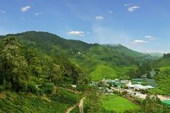 Lokaal dorp bij theeaanplanting royalty-vrije stock afbeelding