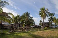 Lokaal dorp op Solomon Islands Stock Afbeelding
