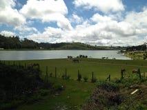 Lokacja w wioski surrondig zdjęcie royalty free
