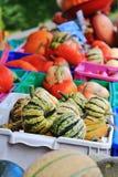 Lokal fruktaffär, återförsäljare i Princeton, British Columbia Trevlig garnering med pumpa, groud, bär frukt Fotografering för Bildbyråer