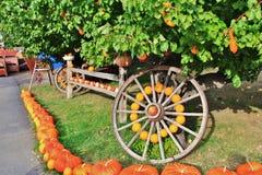 Lokal fruktaffär, återförsäljare i Princeton, British Columbia Trevlig garnering med pumpa, groud, bär frukt på tappningtraktoren Arkivbild