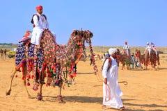 Lokal man som rider en kamel på ökenfestivalen, Jaisalmer, Indien Arkivfoto