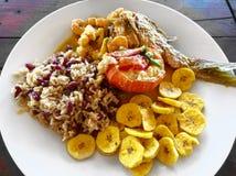 Lokal mat Humret röda snapper fiskar, räka, ris, bönor, stekte pisang, kokosnöt mjölkar sås Roatan Honduras kreolsk unik tra arkivbilder