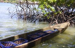 Lokal träfartygcayuco som transporterar öl arkivfoto