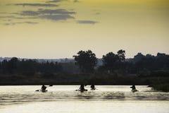 Lokala fiskare i papyruskanoter Arkivfoton