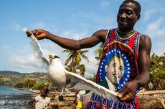 Lokala fiskare som visar en lös havsfågel som han fångade, medan fiska för sardiner Royaltyfria Bilder