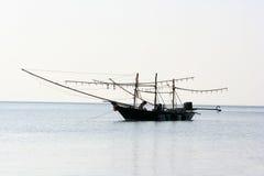Lokala fiskebåtar fångade tioarmade bläckfisken Royaltyfria Foton
