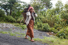 Lokale Dame Carrying Wood in Chin State, Myanmar stock foto's