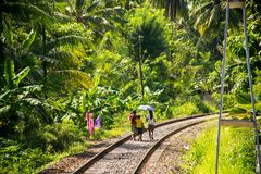 Lokale familie in Sri Lanka die op spoorwegsporen lopen stock afbeeldingen