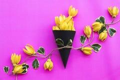 Lokale flora van kananga-olie de gele bloemen van Azië royalty-vrije stock foto's