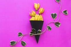 Lokale flora van kananga-olie de gele bloemen van Azi? stock afbeeldingen