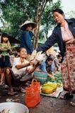 lokale Frau, die Huhn und Früchte am Dorfmarkt verkauft lizenzfreie stockfotografie