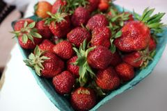 Lokale frische reife Erdbeeren vom lokalen Frischwaremarkt Lizenzfreie Stockbilder