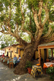 Lokale herberg op Kreta Stock Fotografie