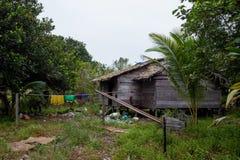 Lokale hut in kalimantan wildernissenindonasia royalty-vrije stock afbeeldingen