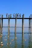 Lokale jonge geitjes met hengels die op de brug van U Bein, Amarapur lopen Stock Fotografie
