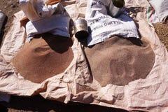 Lokale korrels voor verkoop in Lalibela stock foto