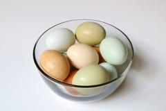 Lokale Landbouwbedrijf Verse Eieren in een Kom Royalty-vrije Stock Afbeelding