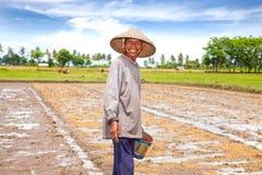 Lokale landbouwer het zaaien rijst, Lombok Royalty-vrije Stock Afbeelding