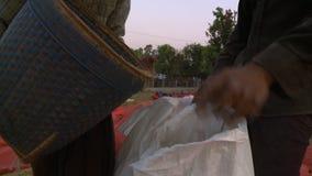 Lokale landbouwers die rijst in zakken gieten die een mand met behulp van stock videobeelden