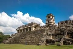 Lokale Leute, die einen schönen Tag in den Ruinen von Palenque in Mexiko genießen Lizenzfreie Stockbilder