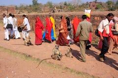 Lokale Leute, die um Ranthambore-Fort unter grauem Langur gehen lizenzfreie stockfotografie