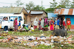 : Lokale markt in Wamena, in Nieuw-Guinea Royalty-vrije Stock Fotografie