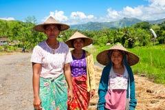 Lokale mensen na het oogsten van rijst royalty-vrije stock afbeelding