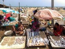 Lokale vissenmarkt op de weg dichtbij het strand in Chennai, India stock afbeelding