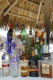 Lokalen och internationalen dricker på strandstången på nuLarimar detinklusive hotellet i Punta Cana Arkivfoto