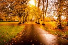 Lokalen parkerar i Kilmarnock på härliga Autumn Day royaltyfri bild