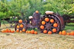 Lokaler Fruchtshop, Händler in Princeton, Britisch-Columbia Nette Dekoration mit Kürbis, groud, Früchte Lizenzfreie Stockbilder