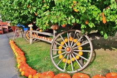 Lokaler Fruchtshop, Händler in Princeton, Britisch-Columbia Nette Dekoration mit Kürbis, groud, Früchte auf Weinlesetraktor, klas Stockfotografie