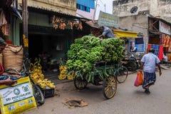 Lokaler Lebensmittelmarkt in Tiruvannamalai, Indien Stockfotografie