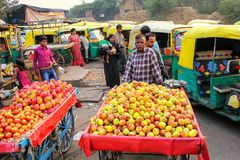 Lokaler Mann, der Äpfel an Kinari-Basar in Agra, Uttar Pradesh verkauft lizenzfreie stockfotografie