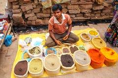 Lokaler Mann, der Gewürze am Straßenmarkt in Fatehpur Sikri verkauft, stockfotografie
