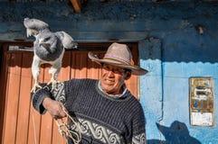 Lokaler Mann mit einem Adler in der Colca-Schlucht, Peru Lizenzfreies Stockbild