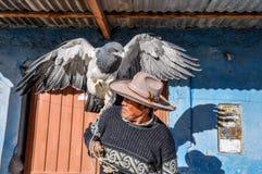 Lokaler Mann mit einem Adler in der Colca-Schlucht, Peru Lizenzfreie Stockfotografie