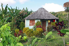 Lokales Haus in Kuba Lizenzfreie Stockfotos