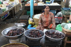 Lokales maket in Sihanoukville Lizenzfreie Stockfotos