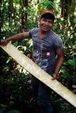 Lokales ticuna Stammes- Mitglied mit Barke von einem Baum, zum sie zu benutzen ein Gewebe wie Material lizenzfreies stockbild