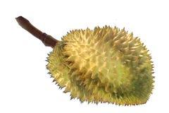 Lokalisiert von reifem Monthong-Durian-Thailand-König der Frucht stockfotografie