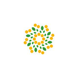 Lokalisierte abstrakte bunte Blume auf dem weißen Hintergrundlogo Punktiertes Blumenblumenblattfirmenzeichen Natürliches Elementz Lizenzfreie Stockfotografie