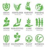 Lokalisierte abstrakte grüne Farbweizenährelogosammlung Naturelement-Firmenzeichensatz Blatt in der menschlichen Handikone Stockbild