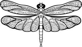 Lokalisierte Bilder einer Libelle Stockbilder