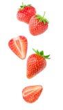 Lokalisierte fallende Erdbeeren Stockfotografie