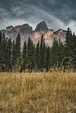 Lokalisierte Höchst- und umgebende Berge und Wälder in Nationalpark Banffs in Rocky Mountains in Alberta, Kanada lizenzfreie stockfotos