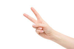 Lokalisierte leere weibliche Hand auf weißem Hintergrund Lizenzfreie Stockfotografie