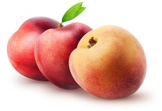 Lokalisierte Nektarinen Zwei ganze Nektarinenfrüchte und -pfirsich mit den Blättern lokalisiert auf weißem Hintergrund mit Beschn Stockbild